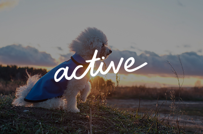 Shop Active Collection
